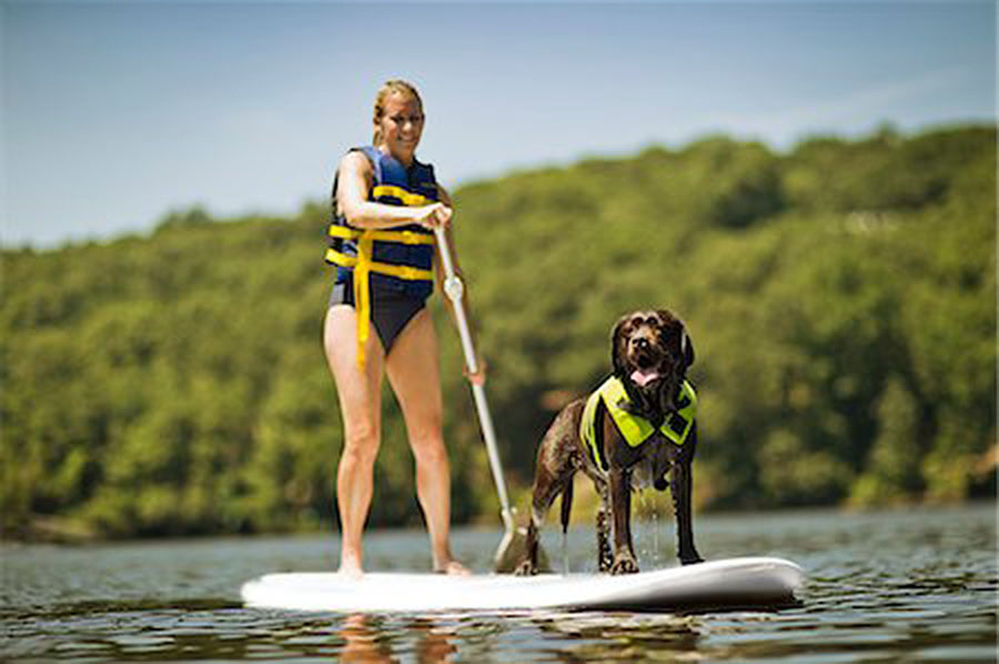 SUP with your pup. Standup Paddle boarding with your dog