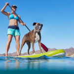 Woman paddle-boarding with dog