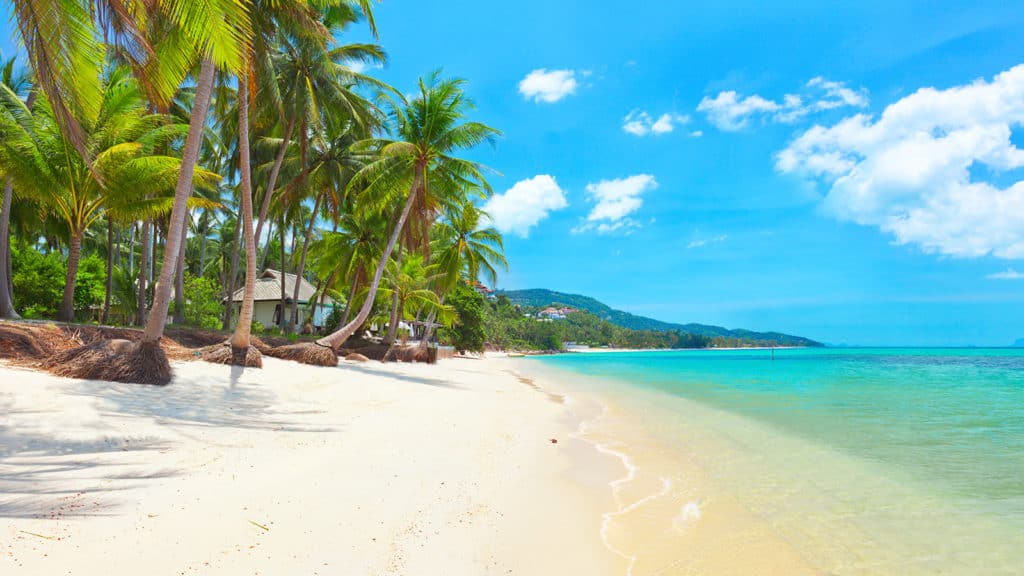 stand up paddle boarding (SUP) in Koh Samui Thailand
