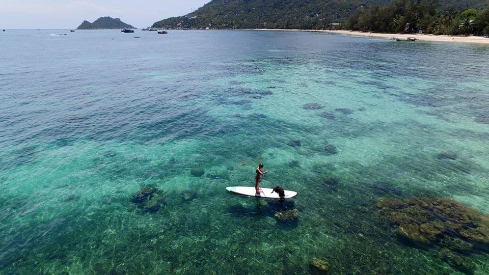 SUP Paddle Boarding at Koh Tao Sairee Beach Thailand