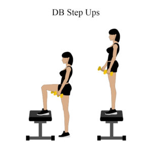 Weighted Step Up Exercises